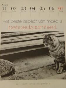 De literaire kattenkalender, Uitgeverij Cossee